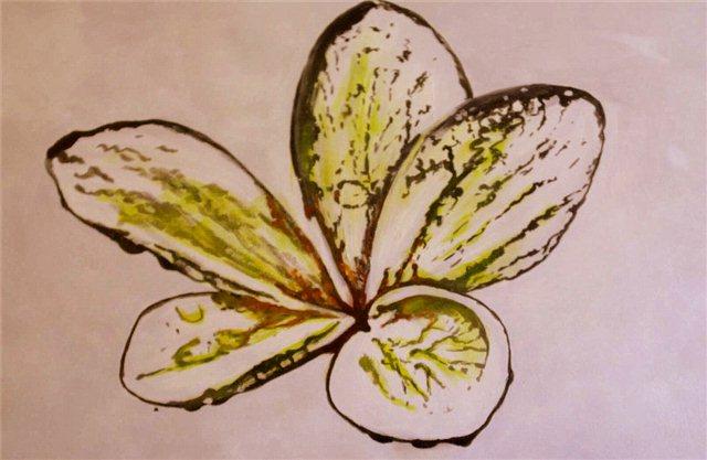 """Schilderij """"Tropische bloem"""""""