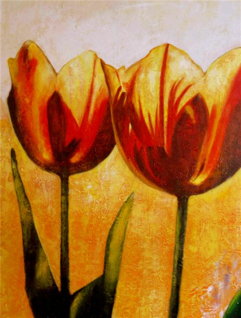 Twee oranje tulpen