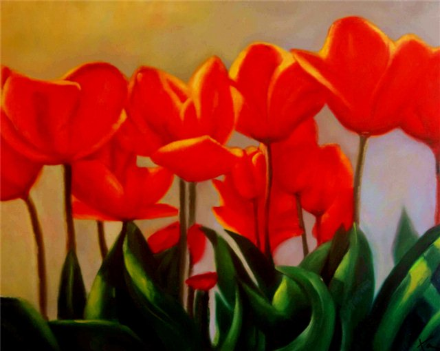 Schilderij van een veldje rode klaprozen