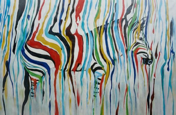 Zebra multicolor