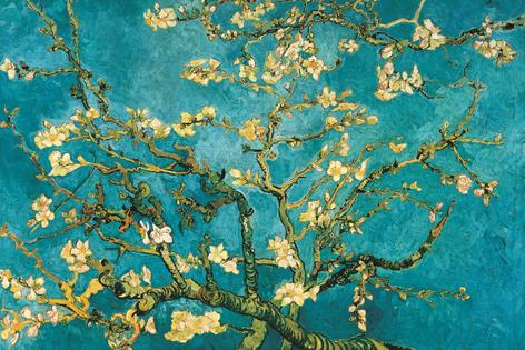 Blossom – Van Gogh 2