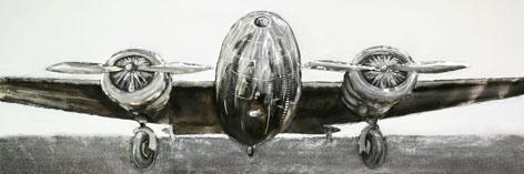 Stoer vliegtuig