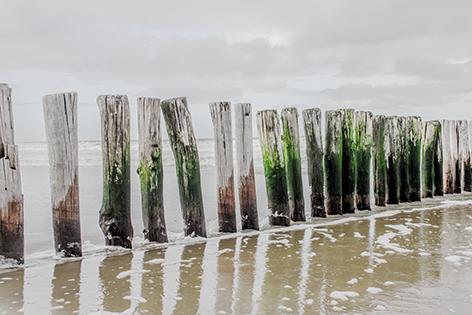 """Aluminium schilderij """"A row of beach poles"""" van Mondiart"""