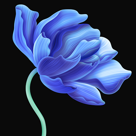"Aluminium schilderij ""Beautiful blue flower"" van Mondiart"