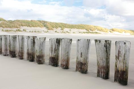 Beach poles at Ameland