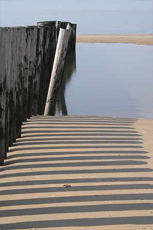 "Aluminium schilderij ""Wooden pales on the beach"" van Mondiart"