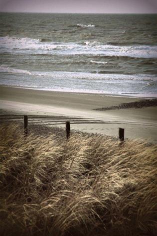 "Aluminium schilderij ""Beach by spring"" van Mondiart"
