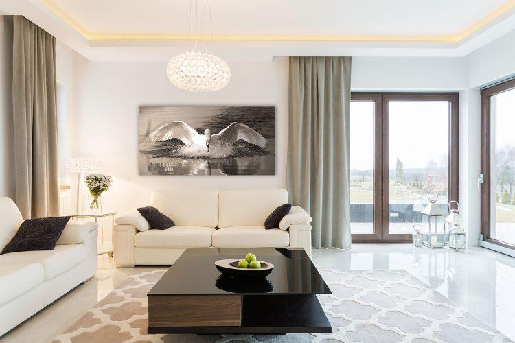 "Aluminium schilderij ""Landende zwaan (Panorama)"" van Mondiart"