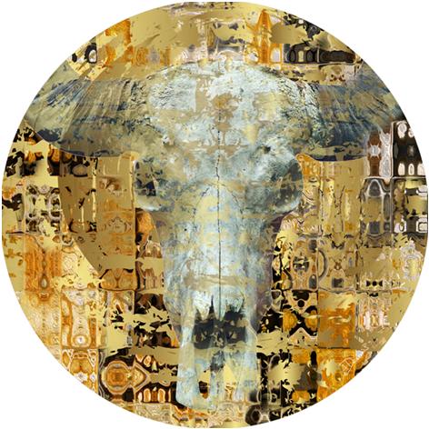 Bas – Skull
