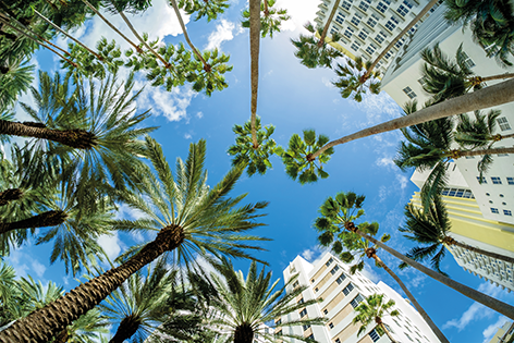 "Aluminium schilderij ""Sunny Miami beach"" van Mondiart"
