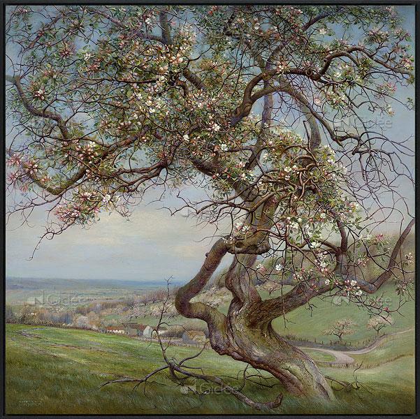 """Giclée/reproductie """"Bloeiende appelboom, Voerstreek"""" met certificaat"""