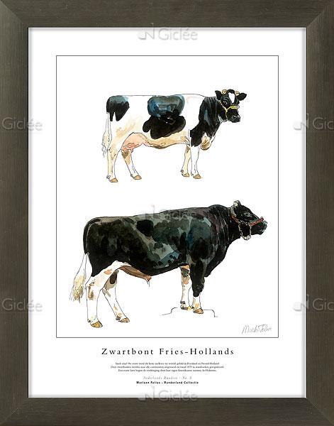 """Giclée/reproductie """"Zwartbont Fries-Hollands"""" met certificaat"""