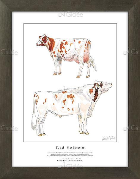 """Giclée/reproductie """"Red Holstein"""" met certificaat"""