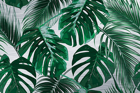 "Aluminium schilderij ""Tropical palm leaves"" van Mondiart"