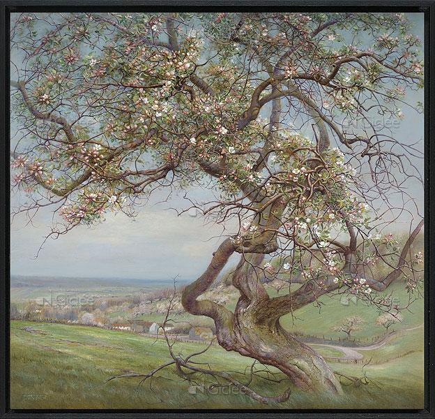 bloeiende appelboom schilderij