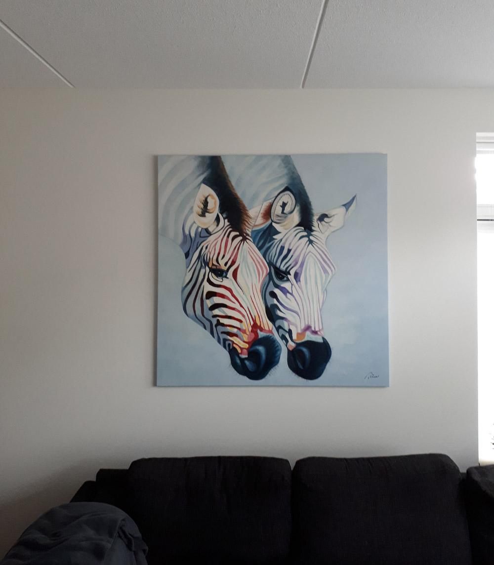 Onze zebra's