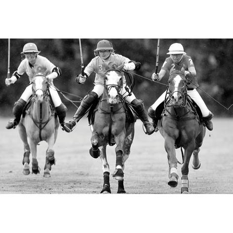 Bronkhorst three polo players