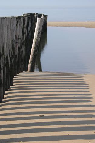 Houten palen op het strand