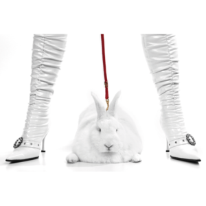 Pit bull bunny / white boots
