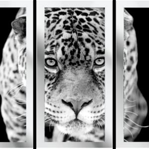 Drieluik luipaard