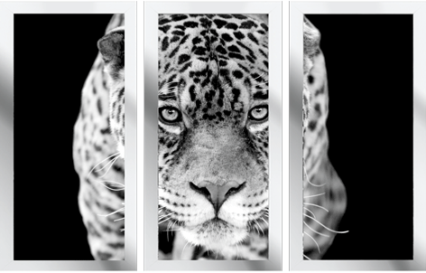 1050534 drieluik luipaard