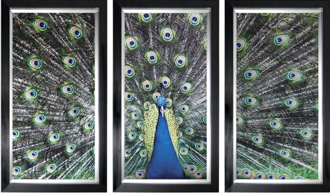 """Ingelijste poster """"Drieluik blauwe pauw"""" van Mondiart"""