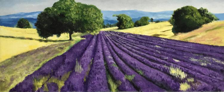 "Schilderij ""Lavendelveld"""
