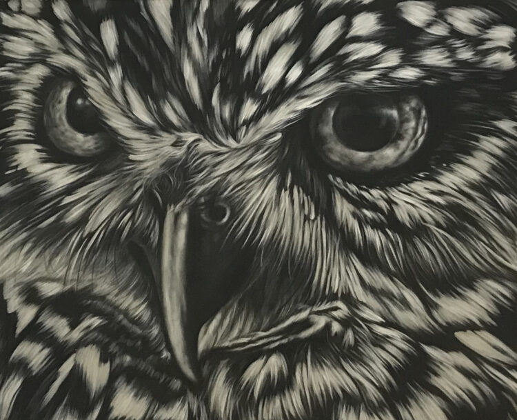 """Schilderij """"Uil / Owl"""""""