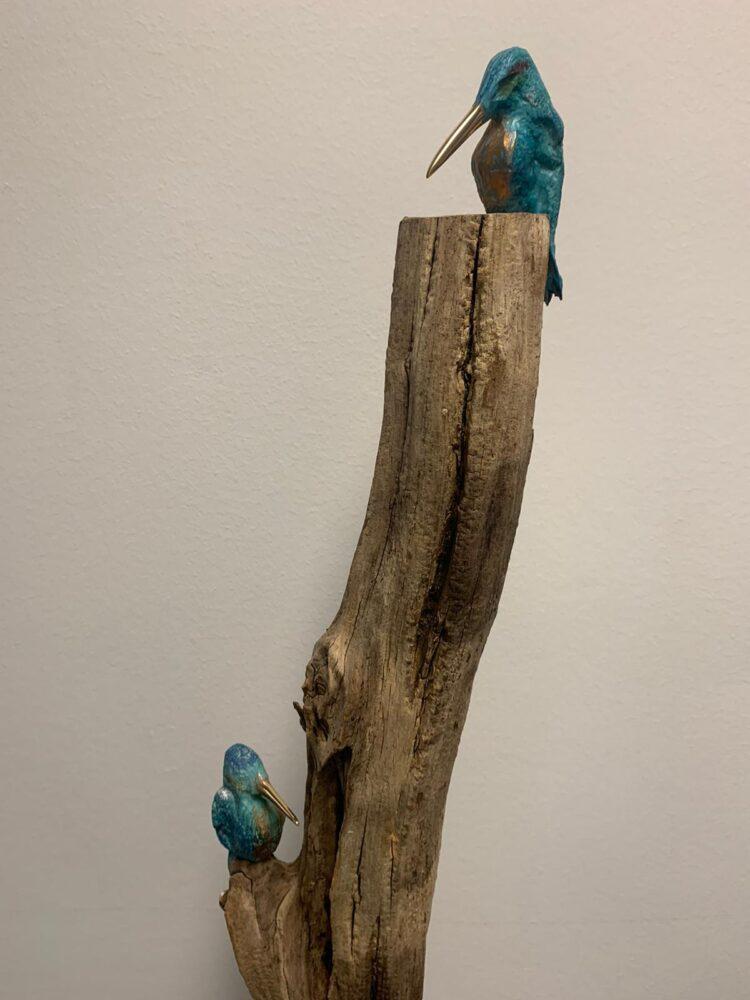 Bronzen ijsvogels op tak