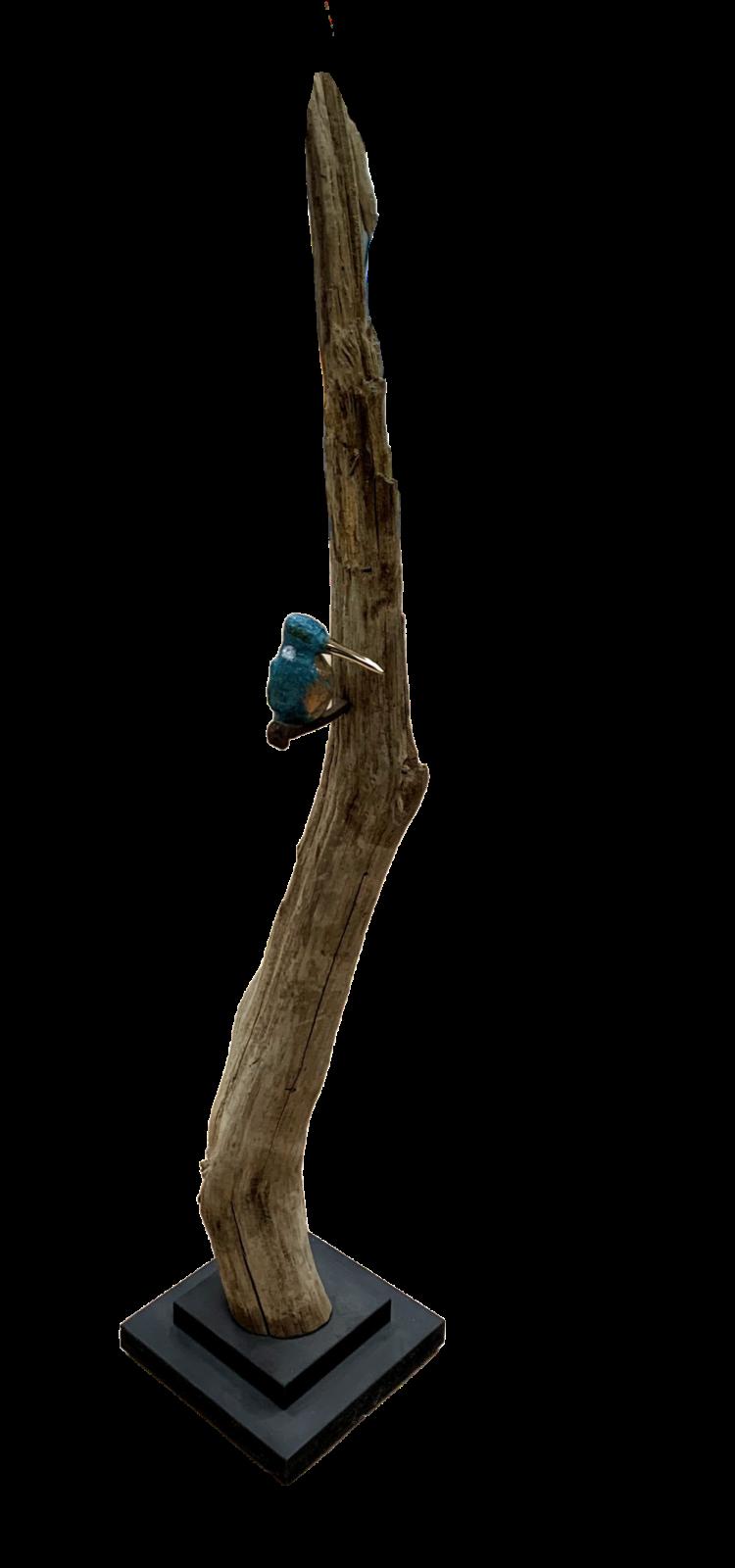 Bronzen ijsvogel (klein) op tak