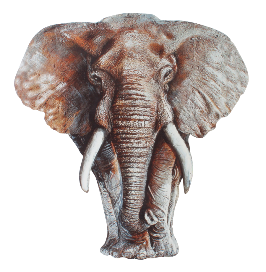 Metalen wanddecoratie Elephant's Gaze
