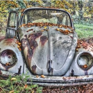 "Wandkleed ""Abandoned Beetle in a forest"" van Mondiart"