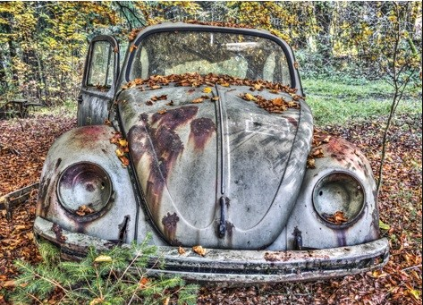 Wandkleed Abandoned Beetle in a forest van Mondiart