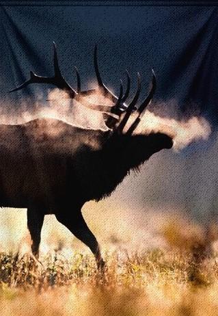 """Wandkleed """"Male Elk with full set of antlers"""" van Mondiart"""