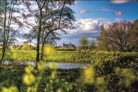 """Aluminium schilderij """"Green overgrown landscape"""" van MondiArt"""