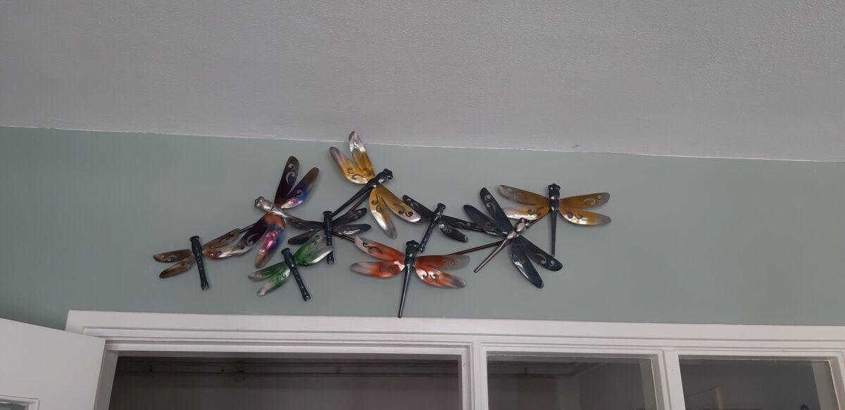 Gave libelles